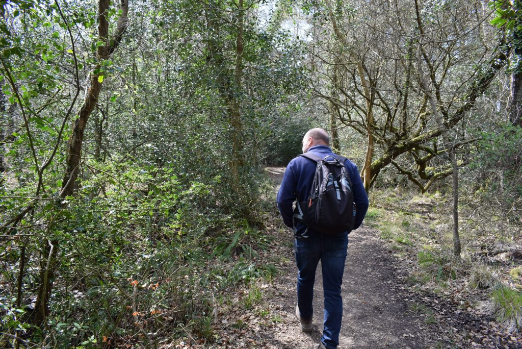 walking roydon woods