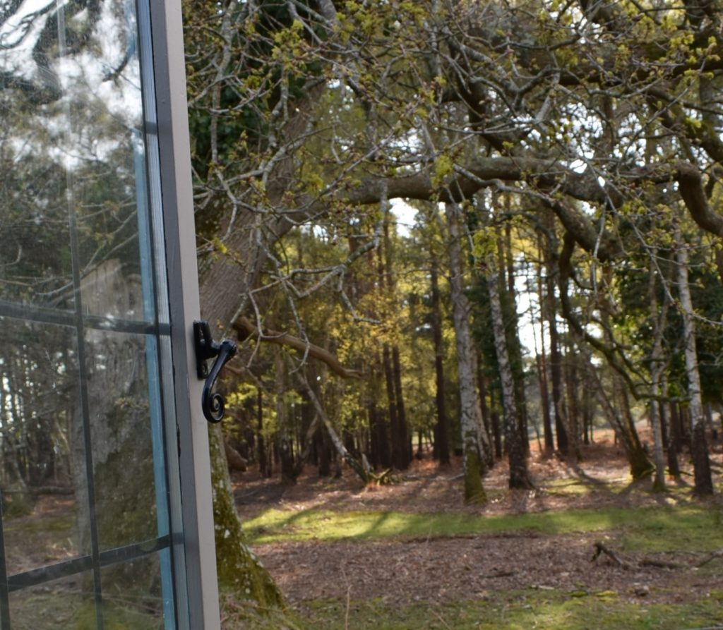 shepherds hut view roydon woods