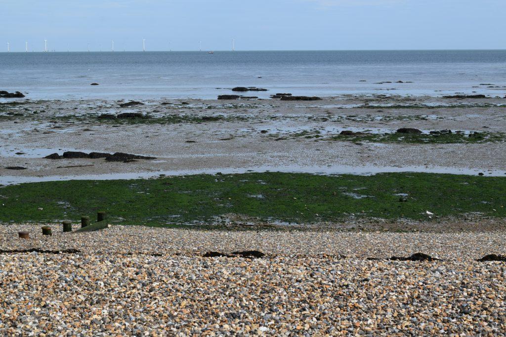 north kent coast herne bay