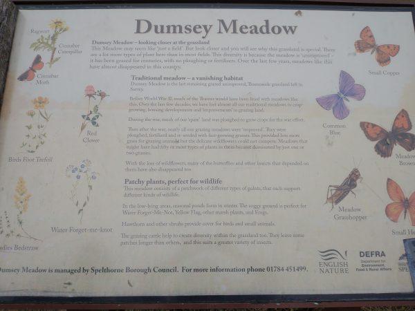 Dumsey meadow sign Chertsey Surrey