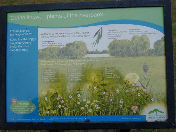 riverbank sign chertsey